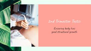 Second Trimester Checkup