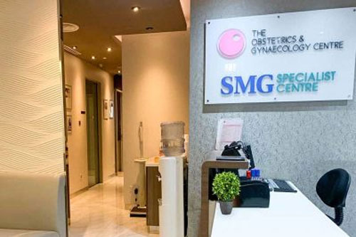 The Obstetrics & Gynaecology Centre @ Mt E Novena